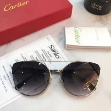 Cariter 00176